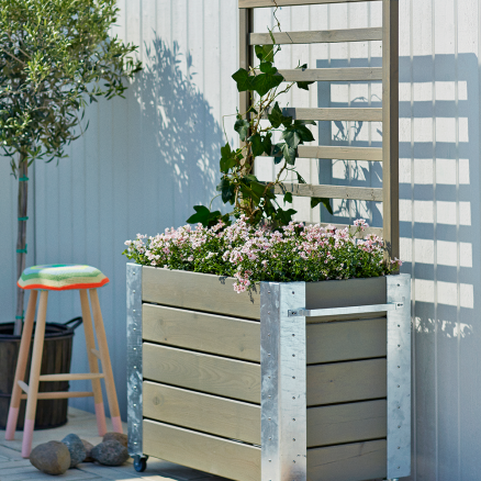 Hyggestemning med klatrende blomster i Plus Cubic blomsterkasse m. espalier høj